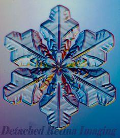 actual snowflake