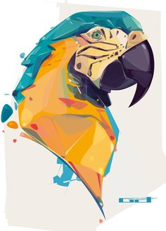 Parrot Illustration | #illustration #graphicdesign