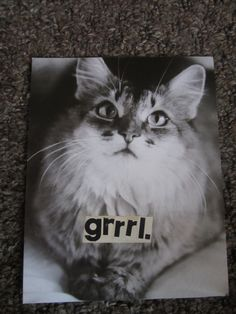 GrrrL cat collage by TheEscapistArtist on Etsy, $3.50