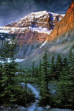 Mt Edith Cavel - Jasper, Canada  Passed out here trying to ride my bike up the mountain!