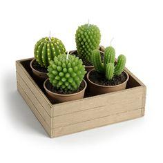 4 candele cactus   supporti in legno