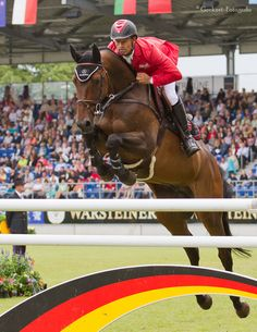 #ShowJumping #Horse #Equestrian