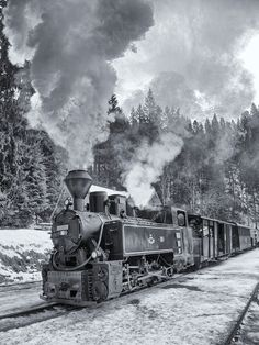 Mocanita, steam train #steamtrain, #narrowgauge