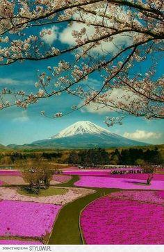 Japan na Stylowi.pl