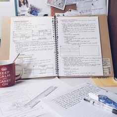 studybuddies101