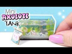 How To Mini Axolotl Tank Tutorial // DIY Miniature Aquarium - YouTube