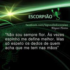 Escorpião... November Rain, Zodiac, Humor, Quotes, Life, Silly Sentences, Words, Zodiac Signs, Scorpion Sign