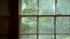 Rainy weather gifs