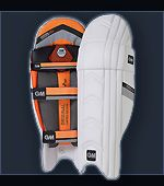 Gunn and Moore cricket pads