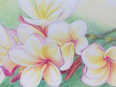 Flowers 2 by Marcela Neamtu