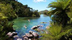 Abel Tasman Amazing, New Zealand    http://www.carltonleisure.com/travel/flights/new-zealand/auckland/