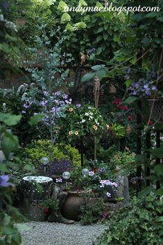 Rindy Mae: The Backyard: 7/17/16