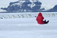Save up to 20% when you book your Patagonia & Antarctica voyage with Aurora Expeditions. Explore Patagonia's breath-taking scenery and incredible nature before enjoying a small-ship expedition to Antarctica. Amazing photographic opportunities await!  http://www.auroraexpeditions.com.au/pages/brochurelandingpage/2335   #Patagonia #Antarctica #photography #AuroraExpeditions