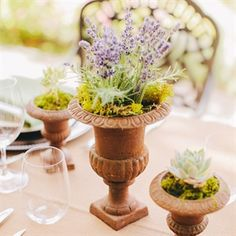 A Tuscan Chic Wedding in Lake Chelan, WA - succulents + lavender + rustic urn tablescape by fleur de lis wedding + event design - www.lakechelanflowers.com at Tsillan Cellars Winery + Photos by ClaneGessel.com - featured on www.theknot.com