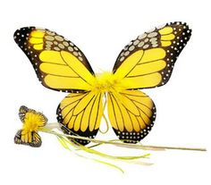 Yellow Monarch Butterfly Fairy Wing and Wand Set  http://www.efairies.com/store/pc/Yellow-Monarch-Butterfly-Fairy-Wing-and-Wand-Set-68p5900.htm  $11.95