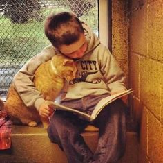 Children's reading session for shelter cats. Touching! Voorleesmiddag door kinderen voor asielkatten. Aandoenlijk!