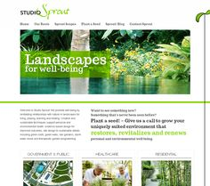 Studio Sprout Homepage Design by Lead Dog Graphic Studio