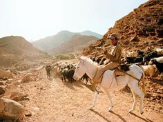Jordan: This picture if from Condé Nast Traveler, but it reminds me so much of the things we saw.