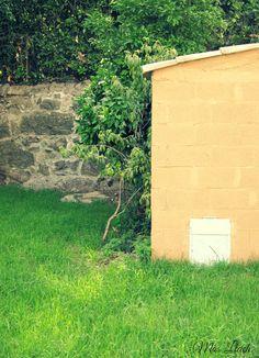 Bocinets del nostre nou exterior... Exterior, Outdoor Spaces