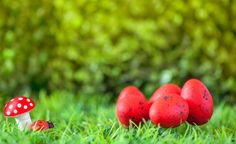 easter eggs with mushroom and ladybird