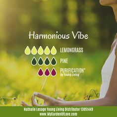Order these wonderful Essential Oils from my website: www.MyYL.com/LesageEssentials and create this harmonious vibe in your home too!