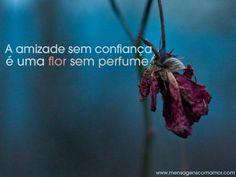 """""""A amizade sem confiança é uma flor sem perfume."""" #Amizade"""