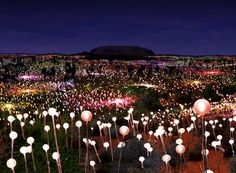 Bruce Munro Announces Largest Solar-Powered Field of Light for Ayers Rock, Australia in 2013! | News | Archinect