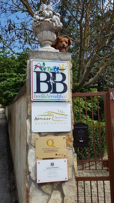 At the entrance of our park our mascot Billy will give you the first welcome! All'ingresso del nostro parco la nostra mascotte billy vi darà il primo benvenuto! #Abruzzo #Travel #Italy navelli #abruzzen #abruzzosegreto #valledeltirino