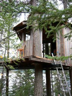 Free Standing Tree House Plans treehouse hardware series - tree attachment bolt (tab) | treehouse