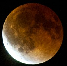 April 2014 lunar eclipse from Lakewood, CA---photo by Mark W. Patterson