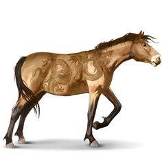 Misaki, Wild horse. From Japan.