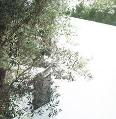 Modern Prefab Cabin house Design prefab homes made in Italy Eco house Modern Prefab Homes, Modular Homes, Prefab Cabins, Luxury Cabin, The Perfect Getaway, Miniature Houses, Cabin Homes, Luxury Interior Design, Italy