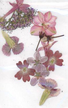 Pressed Flowers - Resort 2013 Inspiration