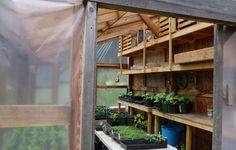 Maraîchage d'hiver – les bonnes idées d'Eliot Coleman Eliot Coleman, Permaculture, Agriculture, Organic Gardening, Outdoor, Beautiful, Recherche Google, Mobiles, Home Decor