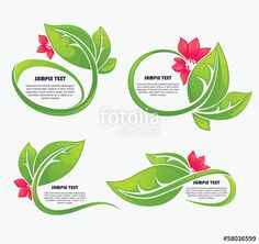Vector: vector collection of green leaf frames and red flowers
