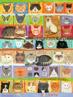$119 BEST IN SHOW - CATS! - Canvas wall art (modern home decor) at GreenBox Art + Culture