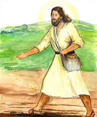 Today's Gospel is the Parable of the Sower (Matthew 13: 1-23). The Lord is the sower and the seeds of truth are His Word. There are different kinds of listeners to the Word. Lord, help me hear, listen, remember and obey Your word. Amen. #Bible #BibleVerse #Scripture #Christian #Christianity