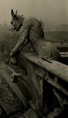 Gargoyle in Notre Dame Cathedral Paris, France. Scary statues built to keep evil spirits at bay. Photo Vintage, Vintage Photos, Vintage Photography, Art Photography, Creepy, Scary, Gothic Architecture, Macabre, Dark Art