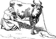 Животных, Прохладные Изображения Гравюры, Корова, Поле