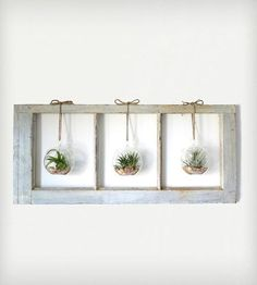 Window Frame Terrarium - 3-Pane | Home Decor | Roots in Rust | Scoutmob Shoppe | Product Detail