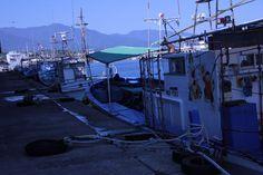 漁船、漁港。