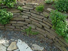 Grondkering van stenen platen met hiertussen beplanting (casligthart) Tags: steen muur muurtje organisch begroeid