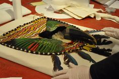 How to Pack Your Toucan! (Part 1) Associate Conservator Angela Duckwall had an unusual task this week: to stabilize and pack a Ecuadorian bark cloth apron, complete with a toucan head (yes, that's a real head, folks!) and macaw and parrot feathers! Can you believe this apron is just one piece of an equally impressive ensemble? First, Duckwall created a muslin pillow for the apron to rest on. Next, she cut an archival base board to fit the internal dimensions of the box. She glued ...
