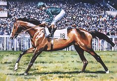 Shergar and Walter Swinburn going to post before his great win in the 1981 Epsom Derby
