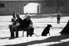 Tomando sol con los viejos   Flickr: Intercambio de fotos