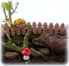 Ninho passarinhos + cogumelo- SEM PINTURA