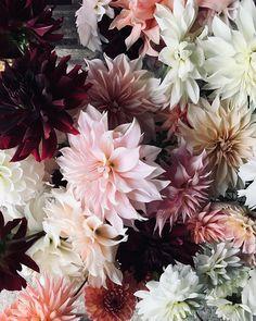"IVY BUSH 34/"" ARTIFICIAL GARLAND PLANT ARRANGEMENT SILK DECOR OXFORD SWAG FLOWER"