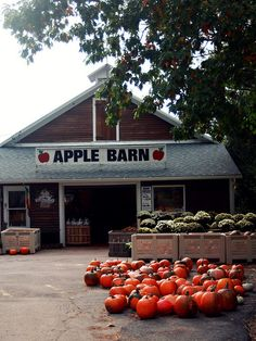 Woodstock orchards