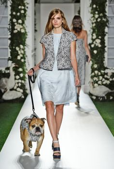 Look 4: Mulberry Spring Summer 2014 #LFW, turbo the mulberry dog!!, dog's accesories