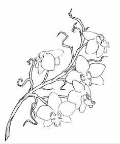 Picturing ink outline, over the shoulder... A rough orchid tattoo design by Lelio-Rising.deviantart.com